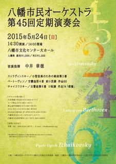 45th_flyer.jpg